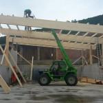 Hallenkonstruktion mit Pultdach